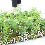 Green Living – Celle Fioriere organiche stampate in 3D