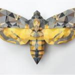 """Janne Kyttanen designer e il suo  """"Butterfly Effect"""""""