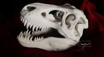 Airwolf 3D e il Filamento biodegradabile