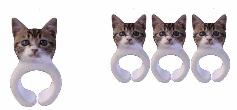 anelli_gatto