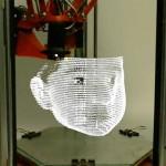 Ritratti artistici simili ad ologrammi con l'utilizzo della stampa 3D