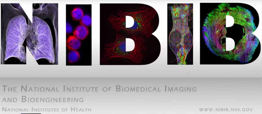 Biomolecole-stampate-3d