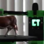 CowTech Ciclop lo Scanner 3D a 99 $ da stampare in 3D direttamente a casa