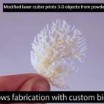 Scienziati costruiscono  stampante laser 3D SLS economica , precisa ed utilizzabile anche per Biomateriali umani