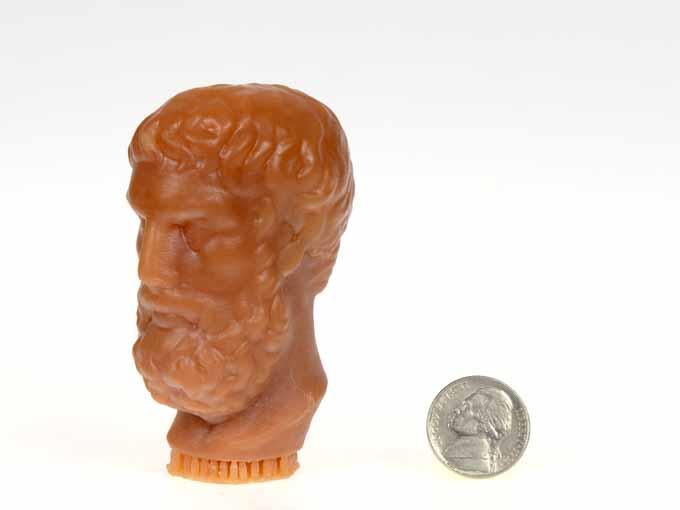 testa stampata con slash