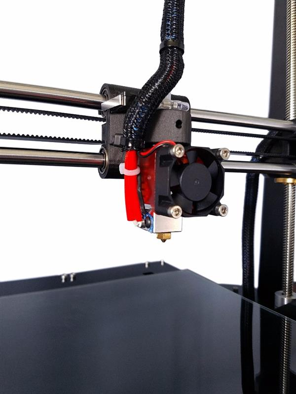 stampate-economica-pingo-3d-4
