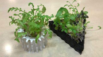La stampa 3D rivoluziona la coltivazione Idroponica