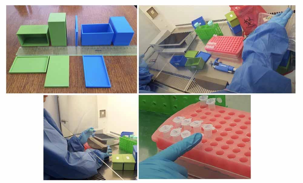 Test di laboratorio  sull'efficacia di PLACTIVE sull'HIV